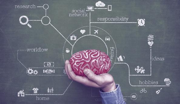 بازاریابی عصبی - ابزارهای نورومارکتینگ و تاثیر آن در فروش