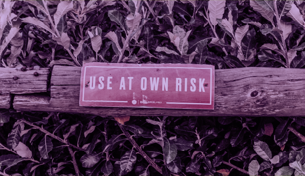 ریسک پذیری چیست؟