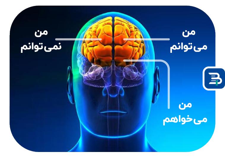 ساختار اراده در مغز